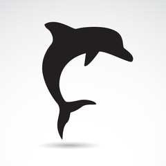 Dolphin vector icon.