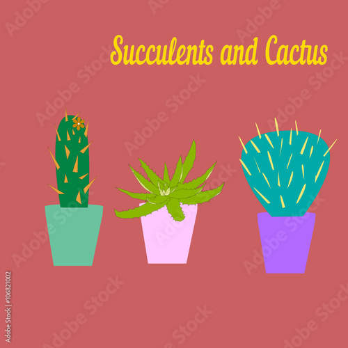 Cactus And Succulent Vector Draw Stock Image And Royalty Free