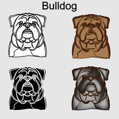 Bulldog. Creative set
