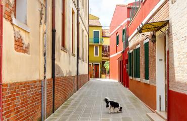 Italy. The island of Burano.  Fototapete