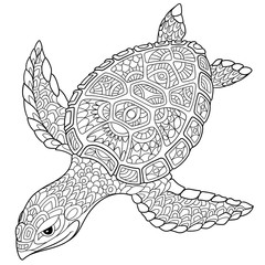Zentangle stylized cartoon turtle, isolated on white background. Hand drawn sketch for adult antistress coloring page, T-shirt emblem, logo or tattoo with doodle, zentangle, floral design elements.
