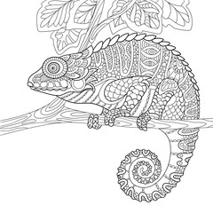 Zentangle stylized cartoon chameleon, isolated on white background. Hand drawn sketch for adult antistress coloring page, T-shirt emblem, logo or tattoo with doodle, zentangle, floral design elements.