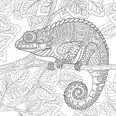 Zentangle stylized cartoon chameleon sitting on a tree branch. Hand drawn sketch for adult antistress coloring page, T-shirt emblem, logo or tattoo with doodle, zentangle, floral design elements.