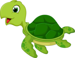 funny sea turtle cartoon