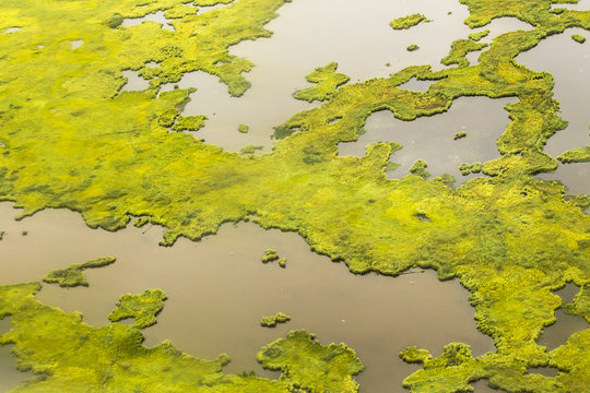aerial photographs of alaska tundra wetlands for backgrounds and