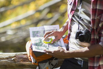 Mixed race hiker reading map in forest