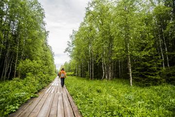 Caucasian hiker on wooden walkway in forest