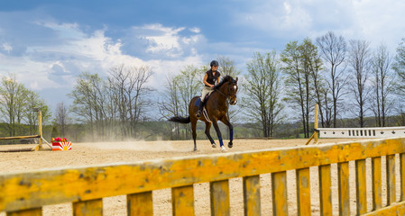 Woman Practicing on Hunter Jumper Horse in Ring