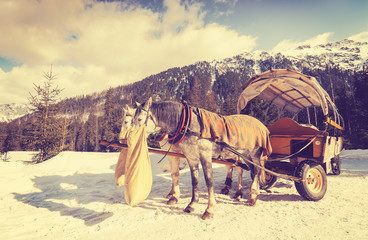 Vintage toned horses eating oats from jute bag after carriage ride by the Lake Morskie Oko in Tatra Mountains, Poland.