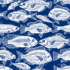 Vector seamless pattern with fishes, different species. Underwat