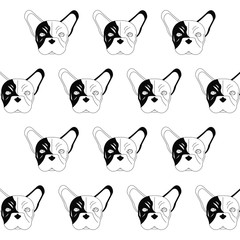 French bulldog design , vector illustration