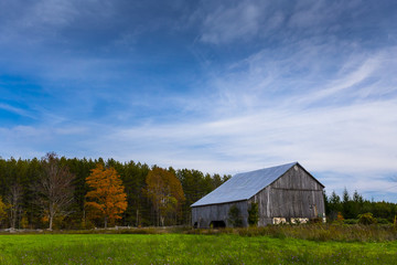old wooden barn landscape