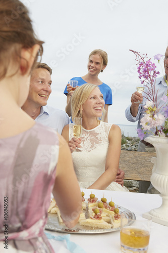 Mid Adult Couple Making A Toast With Group Of Friends At Wedding
