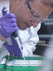 Researcher loads a sample of DNA into an agarose gel for separation by electrophoresis