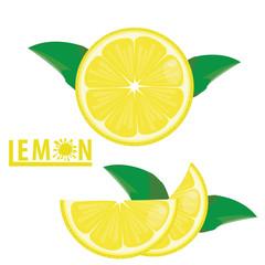 illustration lemon fruits on white ,vector