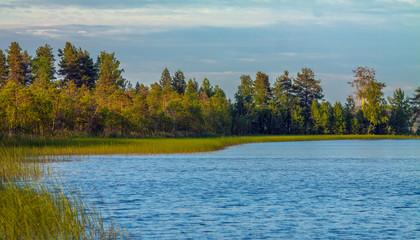 Karelian lake with edge of forest