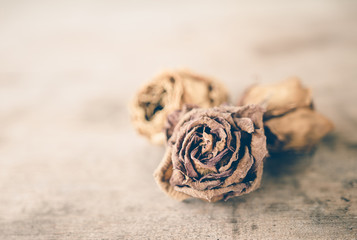 Wilted roses on wooden table