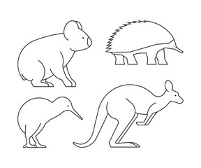 Vector line set of australian animals. Linear icon koalas, kangaroos, echidnas and kiwi.