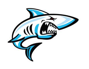 color shark icon