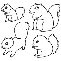vector set of squirrel