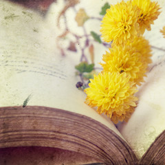 Open book with yellow flowers