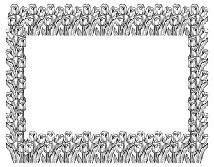 Horizontal frame with elegant tulips. Vector clip art.