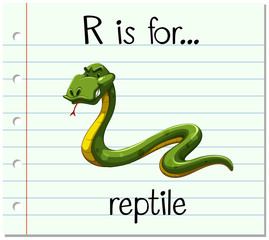 Flashcard letter R is for reptile