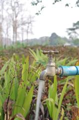 water tap in garden on summer