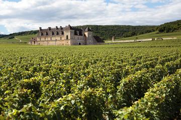 French vineyard chateau Burgundy, France