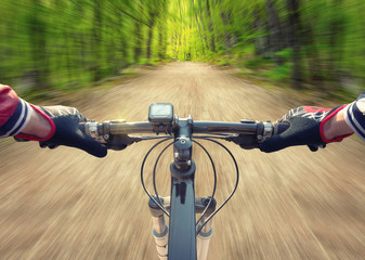 Ride on bicycle on road in summer forest. Sport and active life concept