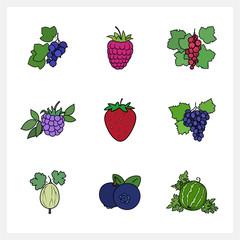 Berry, Flat Design