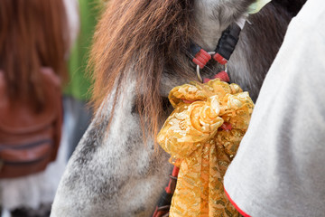 horse in traditional buddhist monk ordination ceremony