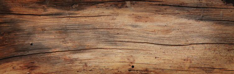 Fototapeta Old rich wood grain texture background with knots obraz