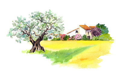 Rural house and yellow field in Provence, France. Watercolor