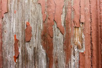 Photo sur Toile Les Textures old brown texture wood 2