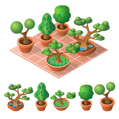 Decorative trees in pot. Isometric icon set. Vector illustration.