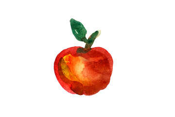 Apple painted watercolor on white background