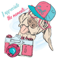 Funny dog with a camera. Vector illustration.