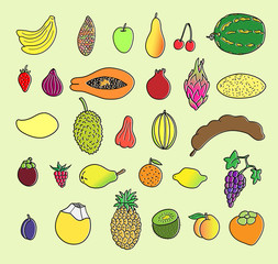 Tropical fruits. Hand drawn collection, vector illustration. Isolated.