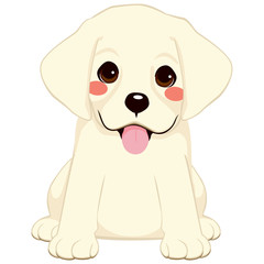 Cute White labrador golden retriever puppy illustration