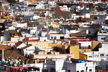 Seville's roofs
