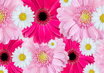 Flowers - background