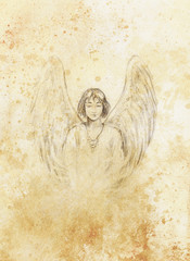 drawing of angel with beautiful wings on a paper.