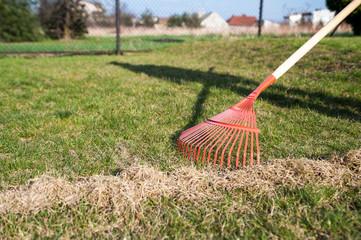raking the grass / The man at the raking grass in the garden at springtime