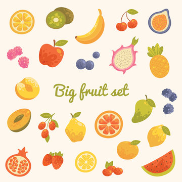 Big colorful summer set of fruits in vector.