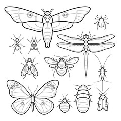 Set insects.