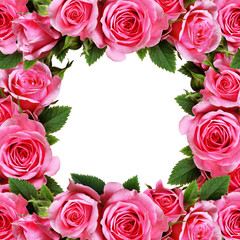 Rose flowers frame