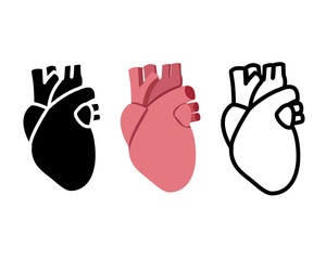 Real human heart in flat style, vector