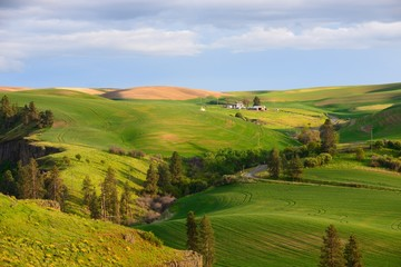 Farm in the rolling hills farmland. Palouse Hills in Washington, United State of America.