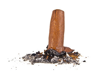 Cigar with ash isolated on a white background